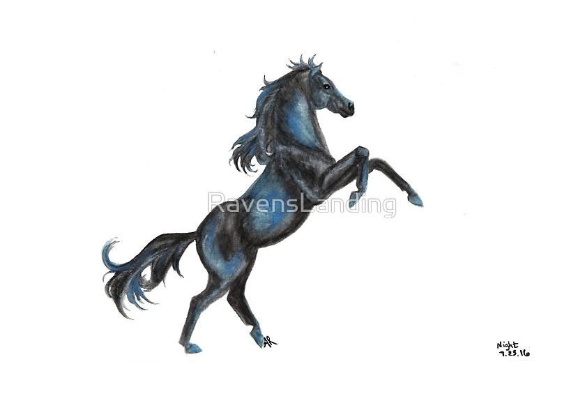fbnighthorsewatermark
