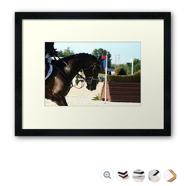 sport-horse-concentrationframe